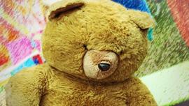 teddy-338247_1280s