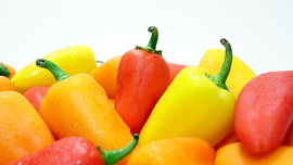 シミや肌荒れを防いで、免疫力もアップ!動画で簡単「夏野菜」を使ったレシピ動画集