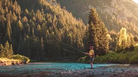自然を満喫しつつワイルドに楽しむ川釣りの風景
