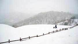 冬の長野も最高だった!動画でみる絶景スポット