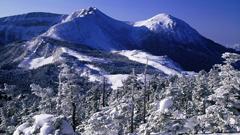 日本をすべて知っていますか?日本の美しい冬を動画で体感してみよう!
