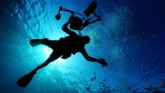 海外や沖縄に行かなくても!国内のおすすめ体験ダイビングスポット
