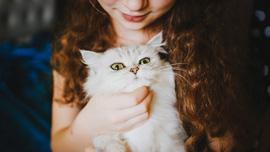 ペットのためにも知っておきたい!今話題のペット保険企業のCM7選