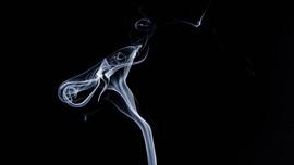 禁煙したくなる!?禁煙のメリットをまとめたYouTube動画集