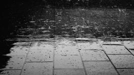 「雨」にまつわる邦楽特集〜梅雨はお部屋でやさしい音楽を〜
